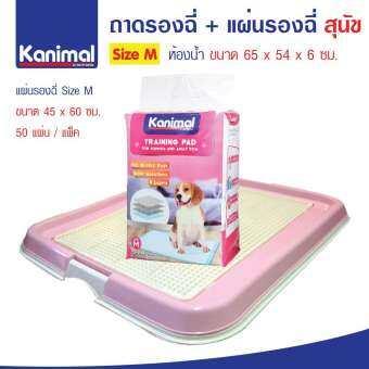 Dr.Lee Toilet Set ถาดฝึกฉี่สุนัข ถาดรองซับ ห้องน้ำสุนัข Size M 65x54x6 ซม. + Kanimal แผ่นรองซับสัตว์-