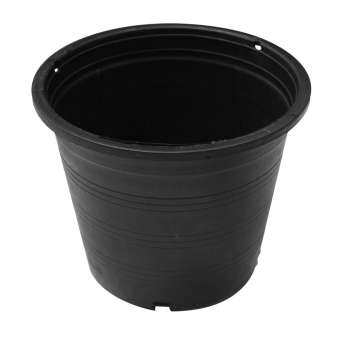 BigBlue กระถางพลาสติก-กระถางต้นไม้ ขนาด 5 นิ้ว (50ใบ)-สีดำ -รุ่น57260010-50