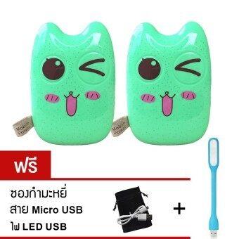Power Bank แบตเตอรี่สำรอง Cartoon 30000mAh รุ่น Totoro (Smile green) แพ็คคู่ ฟรี ซองกำมะหยี่+สาย Micro USB+led