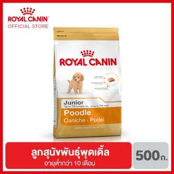 Royal Canin Poodle Junior อาหารลูกสุนัข พันธุ์พุดเดิ้ล อายุต่ำกว่า 10 เดือน 500 กรัม-