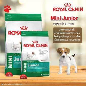 อาหารสุนัข Royal Canin Mini Junior สำหรับลูกสุนัข พันธุ์เล็ก อายุ 2-10 เดือน (แบบตัวเลือก) โดย Yes Pet Shop-