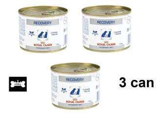 Royal Canin Recovery อาหารสำหรับสุนัขและแมว พักฟื้น 195g ( 3 units )