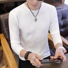 Áo nam vải len dài tay kiểu Hàn Quốc cao cấp