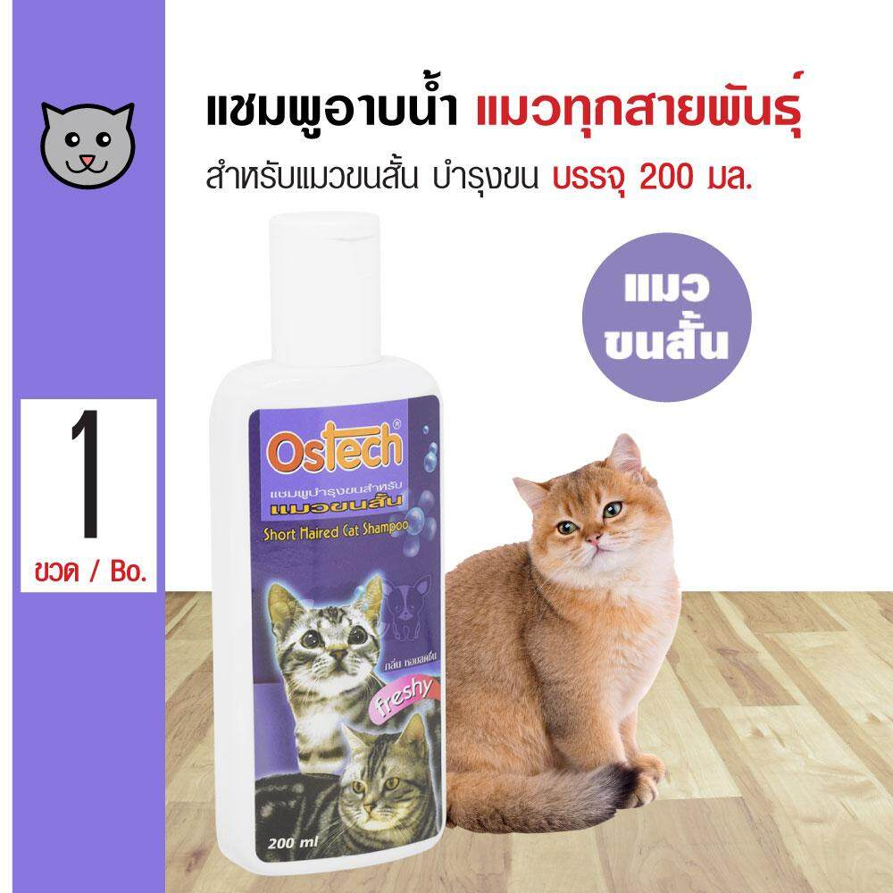 Ostech Cat 200 Ml. แชมพูแมว สูตร Short Hair บำรุงผิวหนังและขน สำหรับแมวขนสั้น (200 มล./ขวด) By Kpet.
