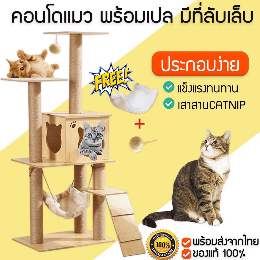 [] คอนโดแมว พร้อมเปล ของเล่น และที่ลับเล็บแมวในตัว ของเล่นแมว(M103)