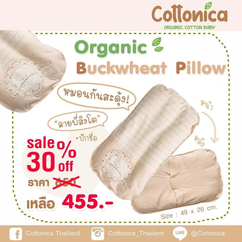ซื้อที่ไหน Cottonica Organic Buckwheat Pillow หมอนกันสะดุ้ง หมอนธัญพีช หมอนกันผวา สำหรับเด็ก ออร์แกนิค (100%ฝ้ายอินทรีย์ปลอดสาร)