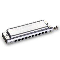 10 หลุม Chromatic พิณใหญ่ออร์แกนปากกุญแจของ C 40 โทนเงิน.