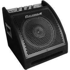 ซื้อ Carlsbro แอมป์กลองชุดไฟฟ้า 30W รุ่น Eda30 Drum Amplifier