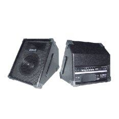 Records Powered Stage Monitor  รุ่น RPM12 - Black