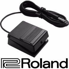ราคา Roland Non Latch Footswitch รุ่น Dp 2 Sustain Pedal ฟุตสวิทช์ ฟุตสวิตช์ สวิทช์เท้าเหยียบ Damper Pedal ใหม่