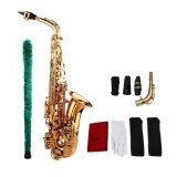 ขาย Saxophone Sax Eb Be Alto E Flat Brass Carved Pattern On Surface Plastic Mouthpiece Exquisite With Gloves Cleaning Cloth Brush Straps Intl ถูก
