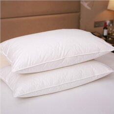 ราคา 100 Hungarian Goose Down Filled Pillow 1800Tc White 100 Egyptian Cotton Cover Intl ใหม่