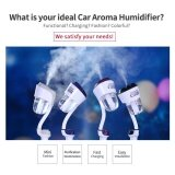 ราคา Car Mini Ultrasonic Aromatherapy Humidifier Air Purify Dual Usb Car Charger With Auto Off Function Color White Intl Unbranded Generic ใหม่