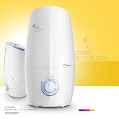 Delmar Home Large Bedroom Quiet Humidifier Office Small Air Mini Aromatherapy Machine For Pregnant Women Intl Unbranded Generic ถูก ใน จีน