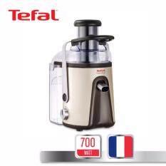 ราคา Tefal เครื่องสกัดนำผักและผลไม้ กำลังไฟ 700 วัตต์ รุ่น Ze585H65 Gold ใน Thailand