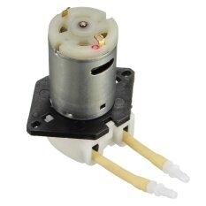 ทบทวน 1X Dc 12V Mini D2 Peristaltic Dosing Pump Motor For Lab Water Analytical Liquid Intl