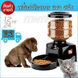 ราคา เครื่องให้อาหารอัตโนมัติสัตว์เลี้ยงสำหรับแมวสุนัขลูกสุนัขกระต่าย 5 5 Liter ใน กรุงเทพมหานคร