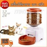 ราคา เครื่องให้อาหารอัตโนมัติสัตว์เลี้ยงสำหรับแมวสุนัขลูกสุนัขกระต่าย5 5 Liter ออนไลน์ กรุงเทพมหานคร