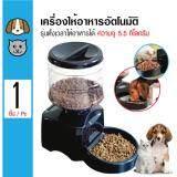 ซื้อ Automatic Pet Feeder เครื่องให้อาหารอัตโนมัติ แบบตั้งเวลาได้ หน้าจอ Led สำหรับสุนัขและแมว ความจุ 5 5 กิโลกรัม กรุงเทพมหานคร