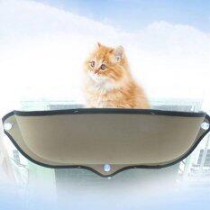 ราคา Cat Accessories ที่นอนแมวแบบติดกระจก เป็นต้นฉบับ