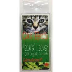 โปรโมชั่น Cat Herb Natural Catnip หญ้าแมว 5G 4 Units Cat ใหม่ล่าสุด
