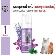 Catidea โฟมอาบน้ำแห้งแมว แชมพูอาบแห้ง สูตรลาเวนเดอร์ บำรุงผิวหนังและขน กลิ่นหอมยาวนาน สำหรับแมวทุกสายพันธุ์ ขนาด 150 มล.