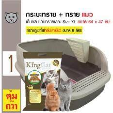 ซื้อ Catidea ห้องน้ำแมว กระบะทรายแมวมีขอบกันทรายเลอะ Size Xl ขนาด 64X47 ซม King Cat ทรายแมวภูเขาไฟ ขนาด 6 ลิตร ออนไลน์