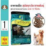 ซื้อ Earthborn Holistic อาหารสุนัข สูตรปลาแซลมอน บำรุงขนและผิวหนัง สำหรับสุนัขทุกช่วงวัย ทุกสายพันธุ์ ขนาด 12 กิโลกรัม ถูก ใน กรุงเทพมหานคร