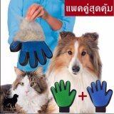 ราคา Get Along ถุงมือแปรงขนหมา แมว แพคคู่ ใหม่