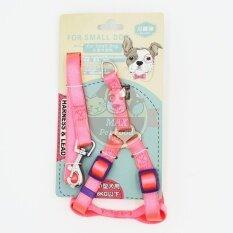 ราคา Gh21สายจูง 120ซม รัดอก15มม ไนลอน สำหรับสุนัขน้ำหนักไม่เกิน 8 กก สีชมพู 1 ชุด ใหม่ ถูก