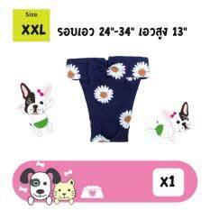 ราคา กางเกงในสุนัข ลายดอกเดซี่ ไซส์ 2Xl รอบเอว24 34นิ้ว เอวสูง13นิ้ว เป็นต้นฉบับ Dogacat