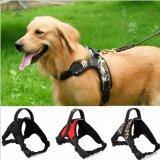 ซื้อ Large Dog Traction Rope Chest And Back Strap Adjustable Harness Comfortable Pet Supplies Camouflage L Intl Unbranded Generic