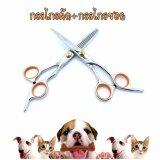ขาย Maeva Shop Vs Sassoon กรรไกรตัดขน กรรไกรซอยขนสุนัข 6 นิ้ว กรรไกรคมกริบสำหรับมืออาชีพ สีส้ม Maeva Shop ถูก