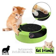 ขาย ซื้อ ออนไลน์ Mouse In Circle ของเล่นแมว กล่องหนูวิ่งวน
