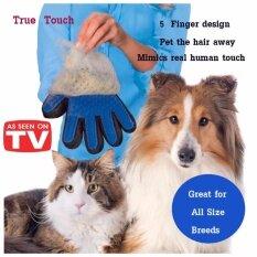 Namita True Touch อุปกรณ์แปรงขนสัตว์เลี้ยง หวีขนหมาและขนแมว ถุงมือกรูมมิ่ง อุปกรณ์แปรงขนสุนัข By Namita Shop.