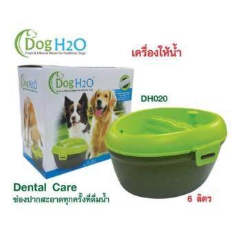 น้ำพุสำหรับแมว สุนัข DogH2O รุ่น Dental Care จุน้ำ 6 ลิตร