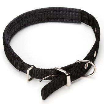 Neck Strap Pet Dog Adjustable Nylon Sponge Comfortable Buckle Collar Puppy Black2CM - intl