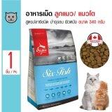 ส่วนลด Orijen อาหารเม็ด สูตรปลา 6 ชนิด บำรุงขนและผิวหนัง สำหรับลูกแมวและแมวโต ขนาด 340 กรัม Thailand