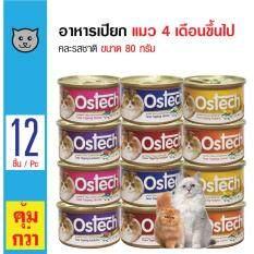 ขาย Ostech อาหารเปียกแมว คละรสชาติ สำหรับแมว 4 เดือนขึ้นไป ขนาด 80 กรัม X 12 กระป๋อง ถูก