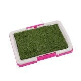 ขาย Pet Dog Toilet Urinary Trainer Grass Mat Potty Indoor House Litter Tray Intl จีน ถูก