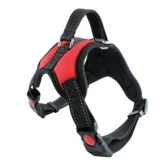 Pets Dog Harness Breathable Mesh Pet Dogs Leash Harness Accessories (Size:L) - intl