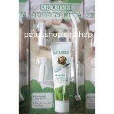 ชุดยาสีฟันแปรงสีฟัน สำหรับสุนัขและแมว รสมินท์ By Petgy Shop Gift Shop.
