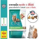 Purina One Indoor อาหารแมว สูตรแมวเลี้ยงภายในบ้าน โปรตีนต่ำ บำรุงขนและผิวหนัง สำหรับแมวอายุ 1 ปีขึ้นไป ขนาด 3 กิโลกรัม ใน กรุงเทพมหานคร