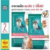 ซื้อ Purina One Salmon อาหารแมว สูตรปลาแซลมอน บำรุงขนและผิวหนัง สำหรับแมวอายุ 1 ปีขึ้นไป ขนาด 450 กรัม X 2 ถุง ออนไลน์ กรุงเทพมหานคร