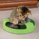 ราคา Catch The Mouse ของเล่นแมว สีเขียว Oemgenuine ใหม่