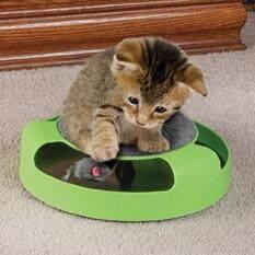 โปรโมชั่น Catch The Mouse ของเล่นแมว สีเขียว