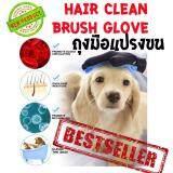 ขาย Roojaipets ถุงมือแปรงขน หมา แมว ของแท้ ถุงมือหวีขน อุปกรณ์แปรงขนสัตว์เลี้ยง หวีขนหมาและขนแมว Grooming Gloves อุปกรณ์แปรงขนสุนัข ผู้ค้าส่ง