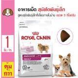 ราคา Royal Canin Indoor Life *d*lt อาหารสุนัขโตพันธุ์เล็ก สุนัขโตอายุ 1ปีขึ้นไป ขนาด 3 กิโลกรัม