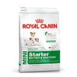 Royal Canin Mini Starter 1 Kg อาหารสำหรับแม่สุนัขตั้งท้อง และลูกสุนัขพันธุ์เล็ก 3 สัปดาห์ 3 เดือน1 กิโลกรัม ใหม่ล่าสุด