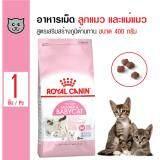 ขาย ซื้อ Royal Canin Mother And Baby Cat อาหารลูกแมวและแม่แมว สูตรเสริมสร้างภูมิต้านทาน สำหรับลูกแมวอายุ 2 4 เดือน และแม่แมว ขนาด 400 กรัม กรุงเทพมหานคร